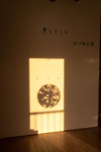 「月をまとう」影